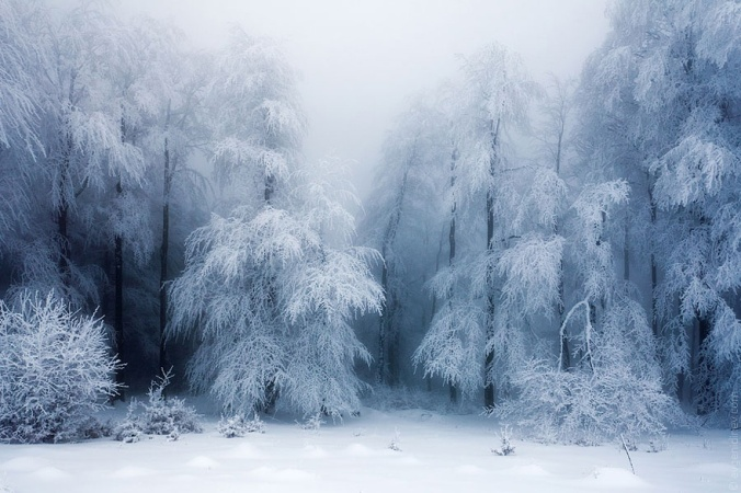 Gorgeous_Winter_Landscapes_20